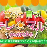 NTV_marche_2015_content